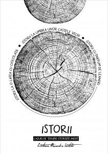 Web_Istorii